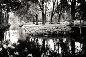 Black and white Park von Robert Kersbergen