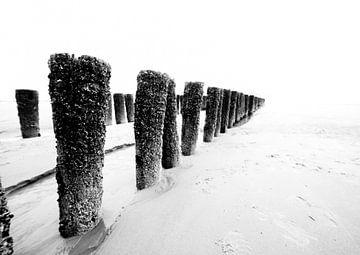 palen op het strand sur Berend-Jan Bel