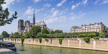 Kathedraal Notre-Dame Panorama van