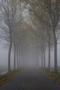Eindeloos in de mist. van