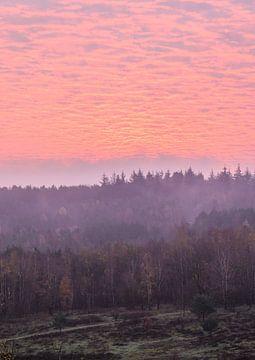 schöner Himmel über Kwintelooijen von Tania Perneel