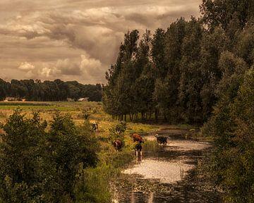 Niederländische Landschaft  von Marcel Post