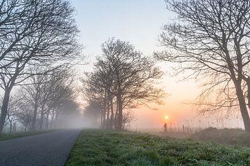 De Vroege ochtend van Frans Bruijn