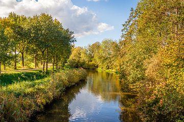 Bomen in herfstkleuren weerspiegeld in het wateroppervlak van Ruud Morijn