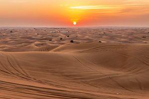 Dubai Desert van