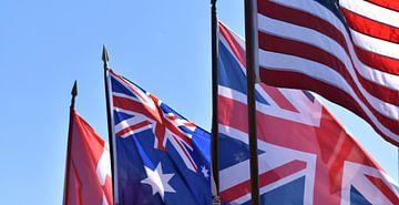 vlaggen von Jasper Vierbergen