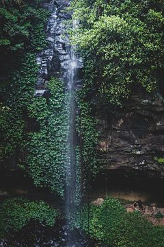 waterval in het regenwoud van Ennio Brehm