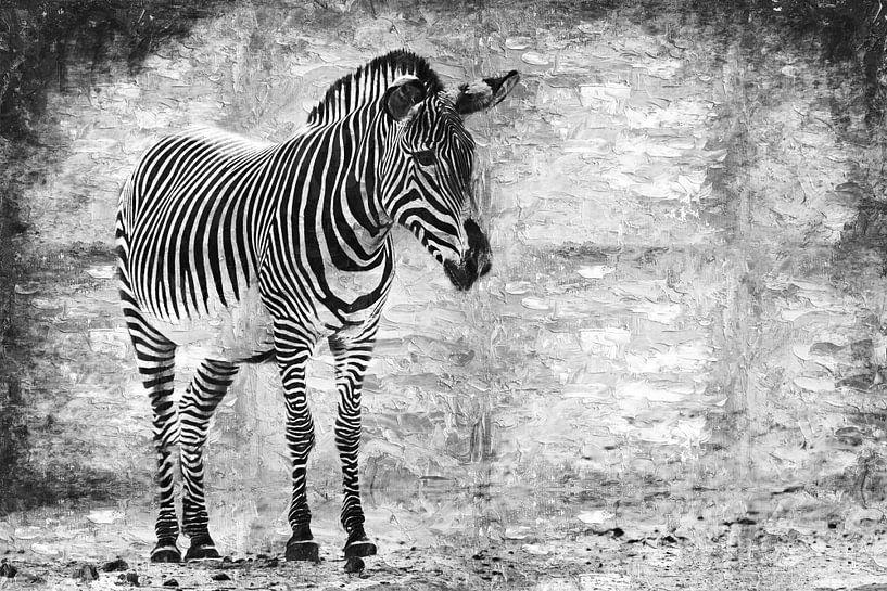 Zèbre (noir et blanc, peinture) sur Art by Jeronimo