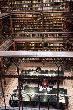 Bibliotheek van het Rijks von Annelies Martinot