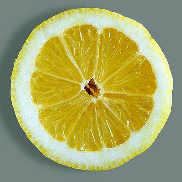 SSU-035 Citron sur Hay Hermans
