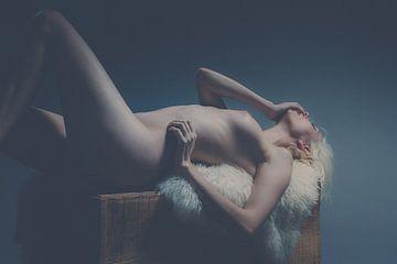 Nude Art van Steven Hendrix