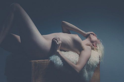 Nude Art van