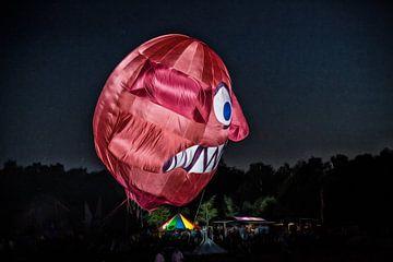 Drachenfestival Norderstedt van Dirk Bartschat
