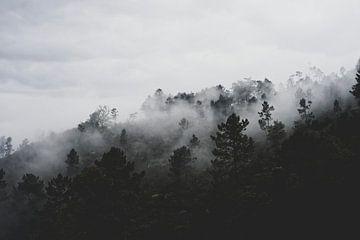 Silent Hill van Olivier Groot