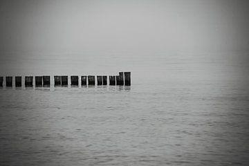Stilleven aan zee