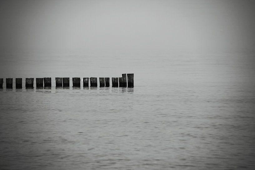 Stillleben am Meer von Frank Herrmann