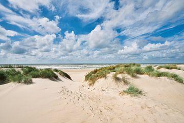Dünenlandschaft mit der Nordsee und dem Strand von eric van der eijk