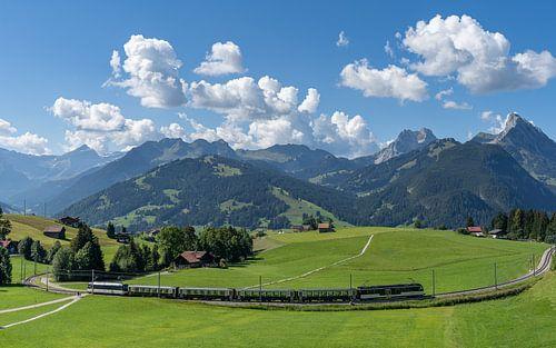 Trein in de Zwitserse bergen