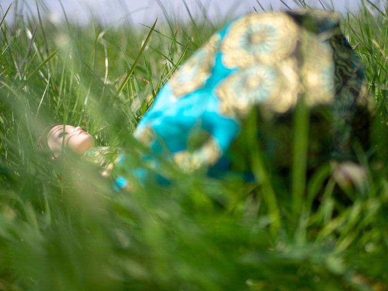 Liggen in het gras van Margreet van Tricht