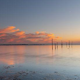 Reflecterende zonsondergang met vispalen van Bas Verschoor