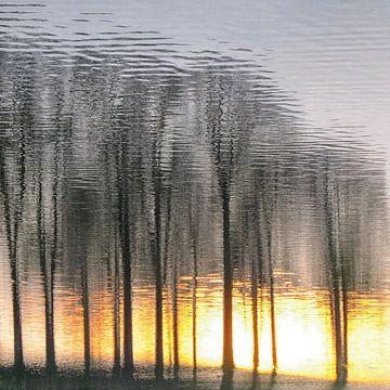 Zonnig spiegelbeeld van Bob Bleeker