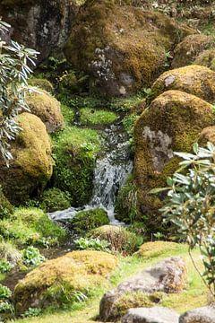 japanse tuin  van Mooi-foto van Well