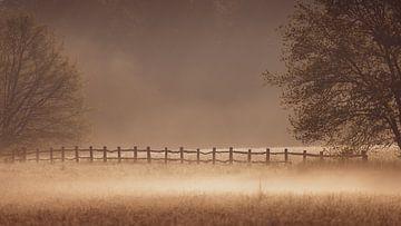 Mist in de morgen van YvePhotography