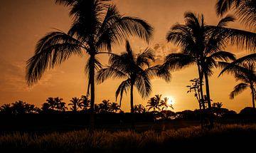 zonsondergang in Hawaii