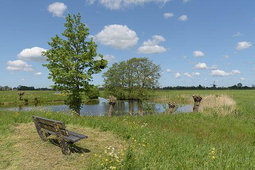 Zitbankje bij waterplas in polder Alblasserwaard