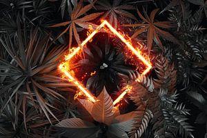 gedraaide rechthoek in vlammen boven tropische planten