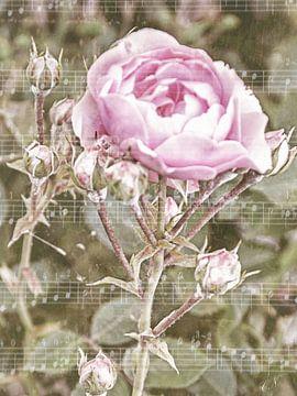 Bladmuziek - Rose Melody van Christine Nöhmeier