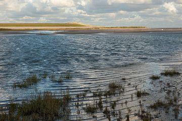 Hoogwater in de slufter van de Verdronken Zwarte Polder van Marijke van Eijkeren