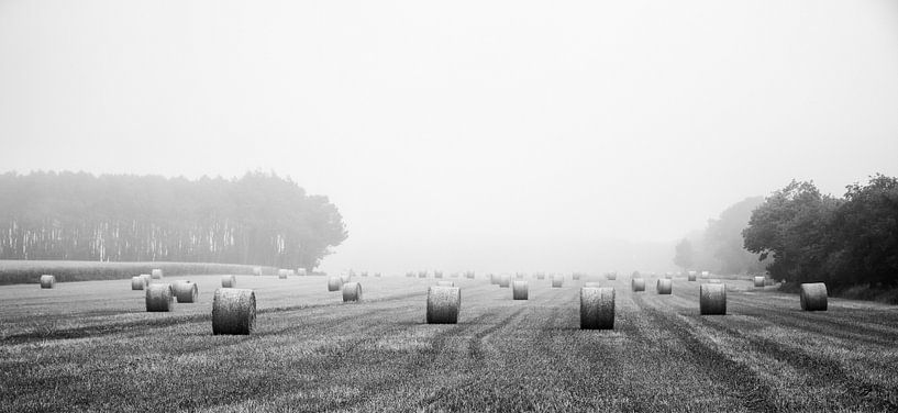 Straw Rolls in Early Morning Fog van Richard Feenstra