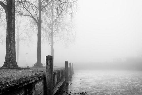 Mist 's ochtends bij het meer