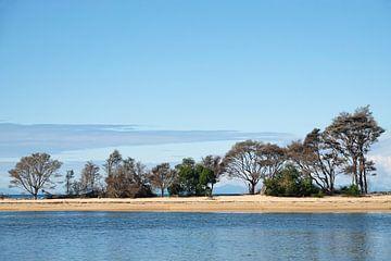Barre de sable Bark Bay dans le parc national Abel Tasman de Nouvelle-Zélande sur Aagje de Jong