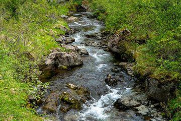 Kleine rivier met kleine stroomversnellingen omlijst door groene struiken van Hans-Heinrich Runge