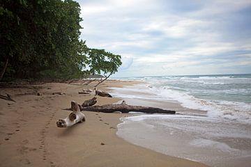 Wilde Caribische kust in Costa Rica van t.ART