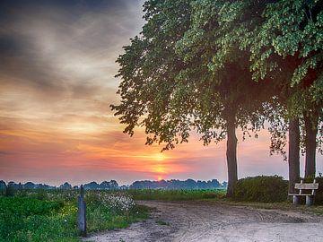 zonsopkomst  van Sylvain  Poel