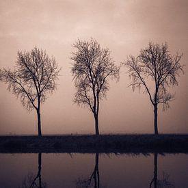 Three II van Bram van Kattenbroek