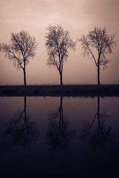 Three II von Bram van Kattenbroek