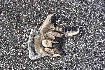 Handschoen 001 van Norbert Sülzner