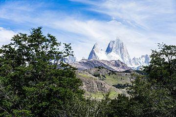 Uitzicht op de Andes in Argentinië van Shanti Hesse