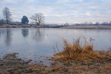 Bevroren vijver van Johan Vanbockryck
