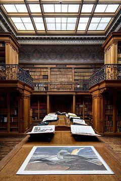 Bibliotheek 2 - Teylers Museum van Teylers Museum