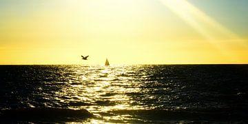 Zeeland. Zonsondergang van Paul Francken