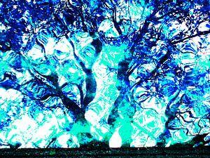 Tree Magic 136-B