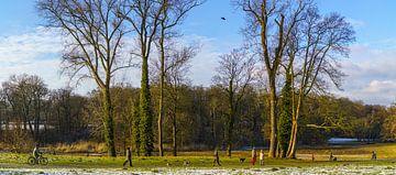 Jenischpark in Hamburg von Heinrich Wimmer