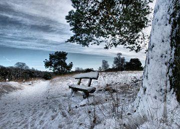 Bankje in de sneeuw van Egon Zitter