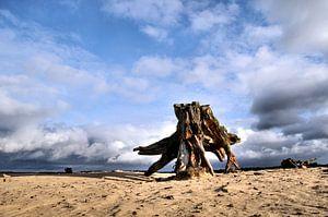 Zandvlakte van Paul Arentsen