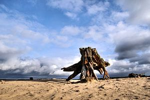 Zandvlakte sur Paul Arentsen